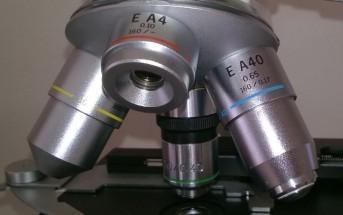 revolver op microscoop koi