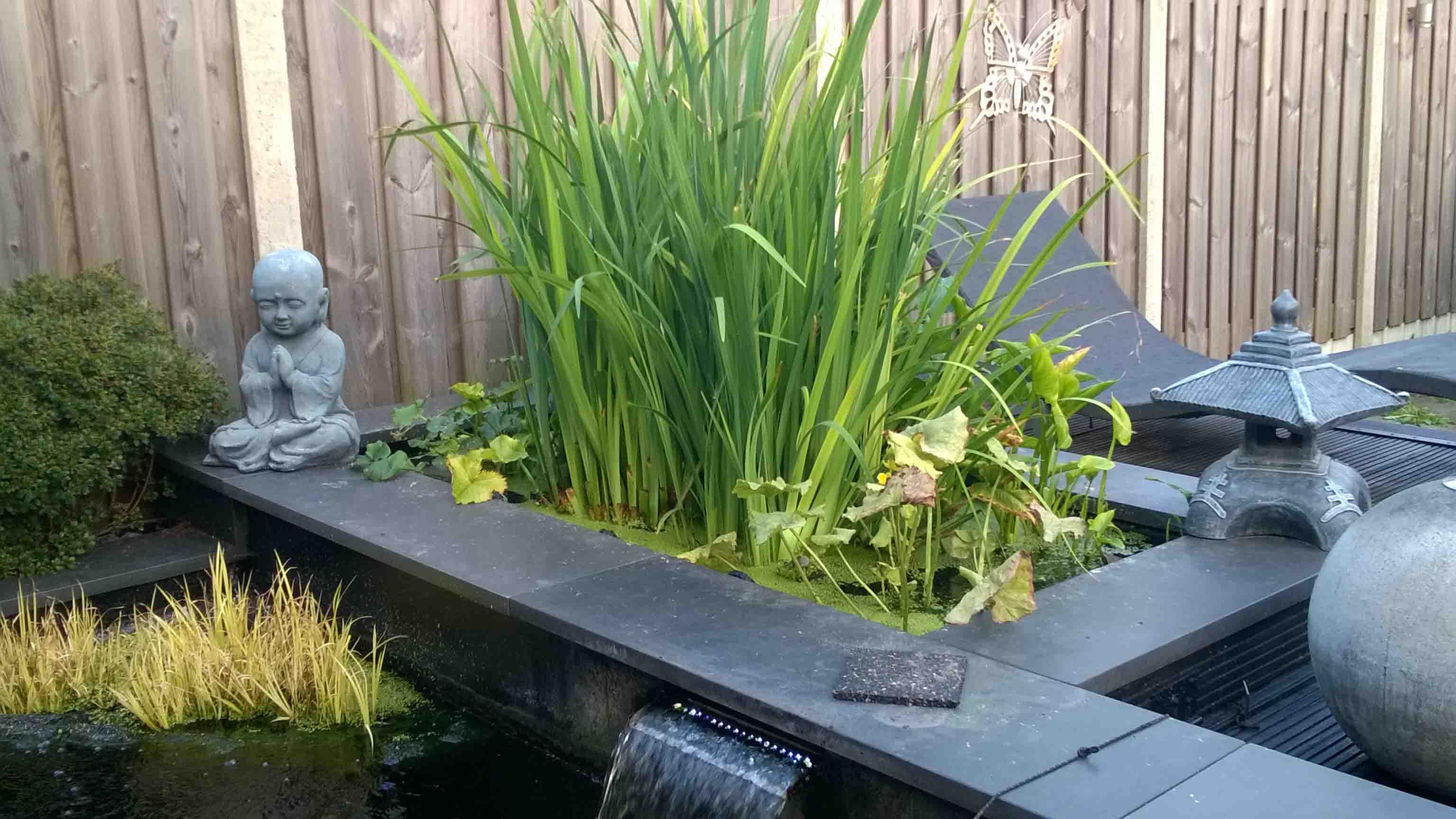 Uitgelezene Tips aanleg plantenfilter - KoiQuestion SL-15